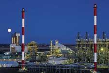 Alberta-plant