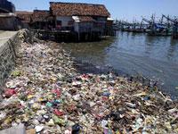 problem of ocean plastic