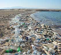 New marine litter study:  Ocean life, at risk of extinction?