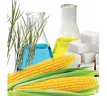 Bioplastics: advancements on the increase