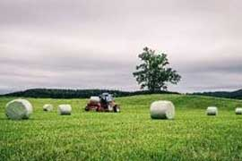 Options for silage film for bale wrap: is cast the new blown film?