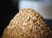 wood-fibre-based biocomposite solutions
