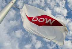 Dow to build US$250 mn specialities hub in South China