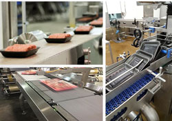 Tekni-Plex boosts manufacturing capability-food tray portfolio