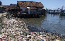plastic-litters