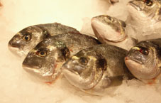 Tilapia was found to be the most contaminated