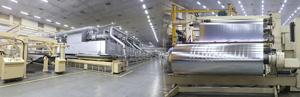 Uflex to build EUR70