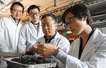 WSU-researchers